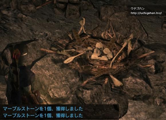 【DDON】