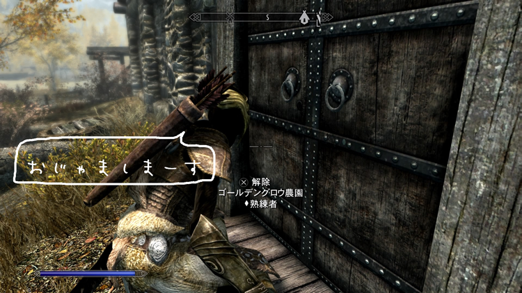Skyrim – リフテンで盗賊ギルドに入りました!
