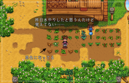 【Stardew Valley】1年目の春、14日(日)の日記